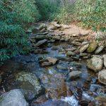 Shinny Creek