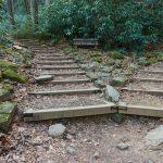 High Shoals Falls Loop Split