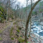 Mossy Rocks, Trail, and River