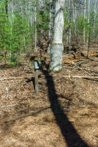 Airstrip and Shelter Rock Trails