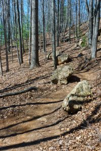 Boulders Beside the Airstrip Trail