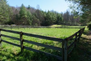 Horse Pasture Beside the Barn