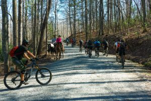 Riders on Conservation Road