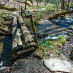 Log Bridge over Coontree Creek