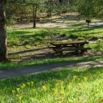 Coontree Picnic Area