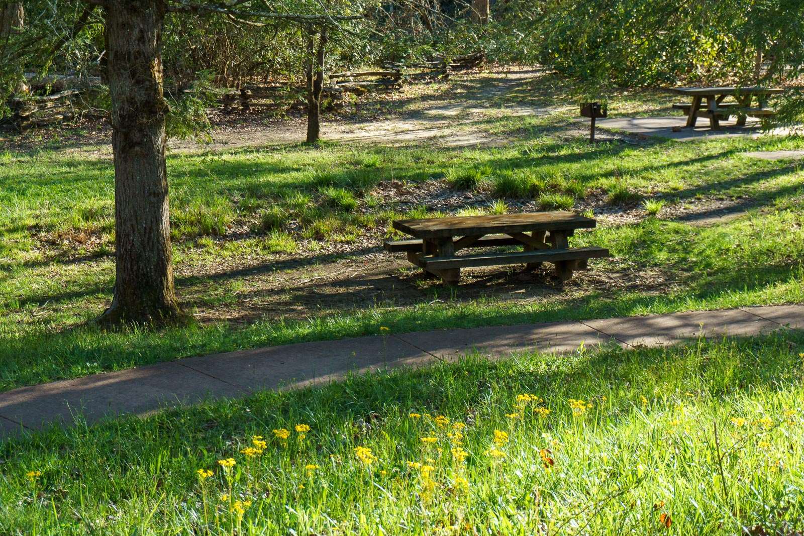 Coontree Picnic Area – WNCOutdoors.info