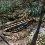 Another Log Bridge on the Coontree Loop Trail