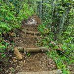Snowball Trail Steps