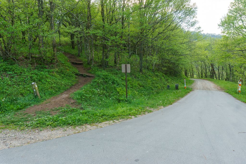 Start of the Snowball/Mountains to Sea Trail in Beetree Gap