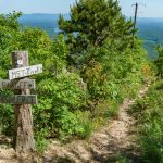 Mountains to Sea and Shortoff Mountain Trail Junction
