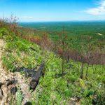 View Climbing Shortoff Mountain