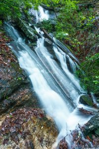 Casita Falls in Spring Foliage