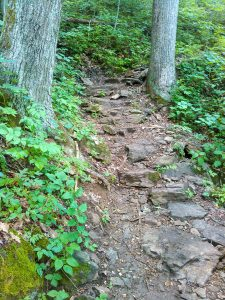 Rocky Section of the Mountains to Sea Trail