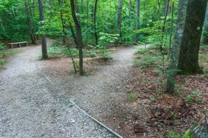 Mountains to Sea Trail and Nature Trail