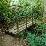 Bridge on the Joyce Kilmer Memorial Loop