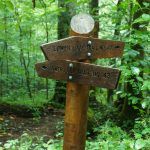 Signs for the Joyce Kilmer Loop Trail