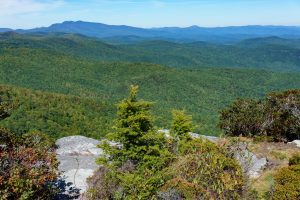 View of Grandfather Mountain from the summit of Hawksbill Mountain.