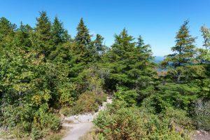 Ridgeline on the Hawksbill Trail
