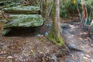 Rock Ledge Beside the Hawksbill Trail