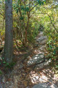 Rocky Climb on the Hawksbill Trail