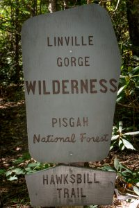 Hawksbill Trail Sign