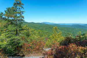 View Northeast from Hawksbill Trail