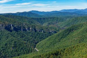 View of the Northern Linville Gorge from Hawksbill