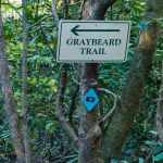 Graybeard Trail Sign