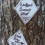 Lookout Summit Sign