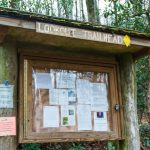Information Board at the Lookout Trailhead