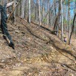 New Chestnut Knob Trail