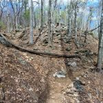 Rocky Ridge above the Chestnut Knob Trail
