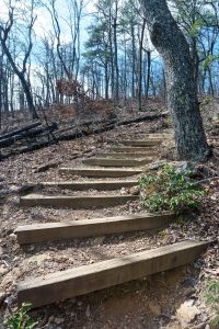 Steps on the Chestnut Knob Trail