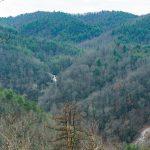 View of High Shoals Falls