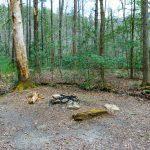 Campsite near the Pinch-In Trail