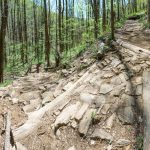 Armored Steps and Switchback on the Farlow Gap Trail