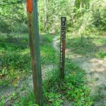 Old Sign Post on the Long Branch Trail