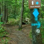 Mount Mitchell Trail Sign
