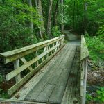 Briar Bottom/River Loop Trail Bridge