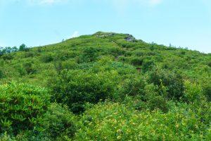 Art Loeb Trail Between Black Balsam and Tennent