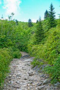 Rocky Stretch of Trail