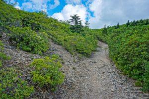 Rocky Slope Beside the Ivestor Gap Trail