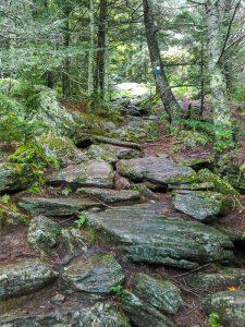 Rocky Stretch of Camp Alice Trail