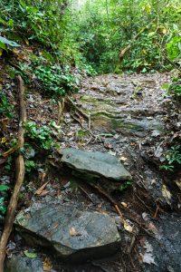 Rock Steps on the Duggers Creek Trail