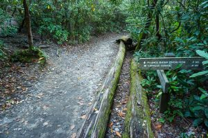 Plunge Basin and Gorge Trails
