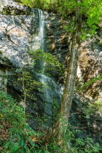 Wet Weather Waterfall near Hickory Branch Falls