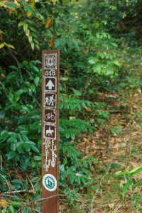 Start of the Devils Elbow Trail
