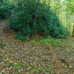Macs Gap Trail Switchback