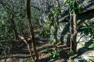 Rock Outcrop on the Rocky Head Trail