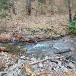 Fairy House Trail Start